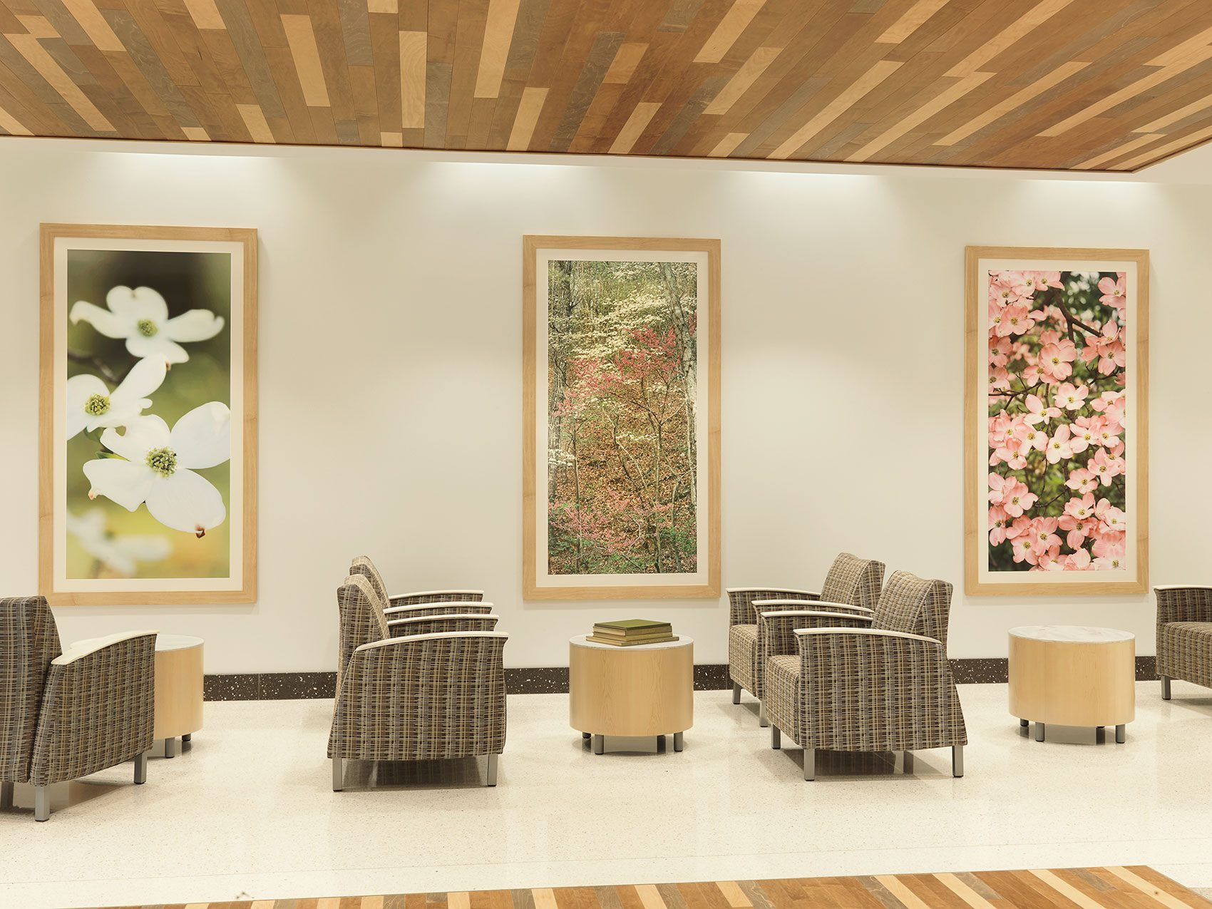 Healthcare Interior Design Furniture Procurement Art